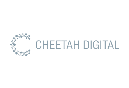 Customer Acquisition_Cheetah